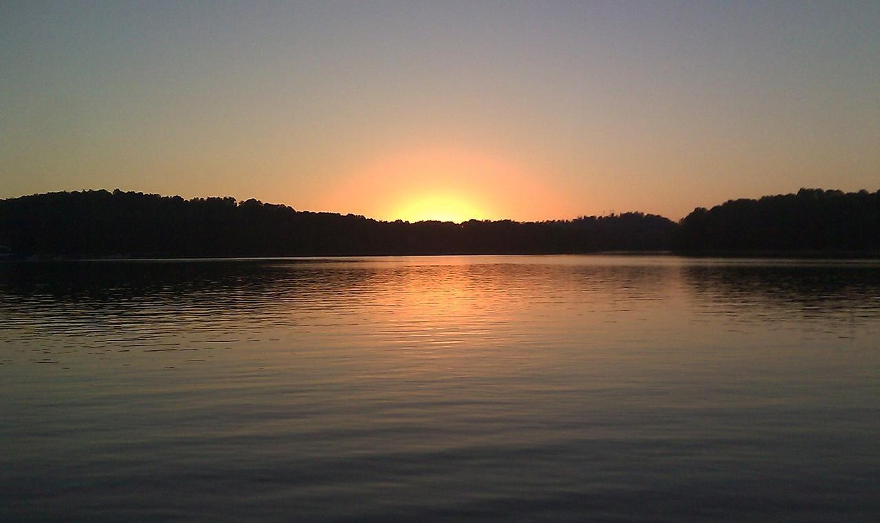 Boone lake info com boone lake tennessee information for Fishing lakes in tennessee